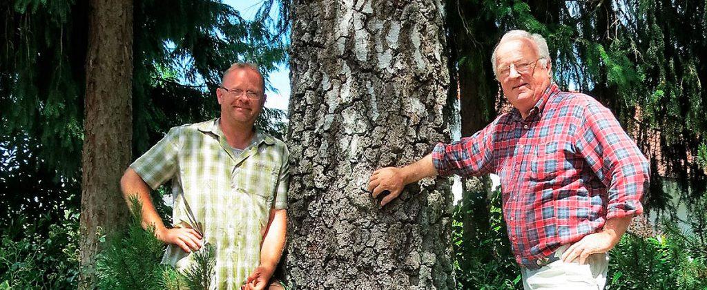 Kontakt Urban Münchner Baumpflege