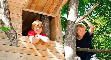 Kronensicherung Urban Münchner Baumpflege