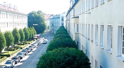 Verkehrsicherung Urban Münchner Baumpflege